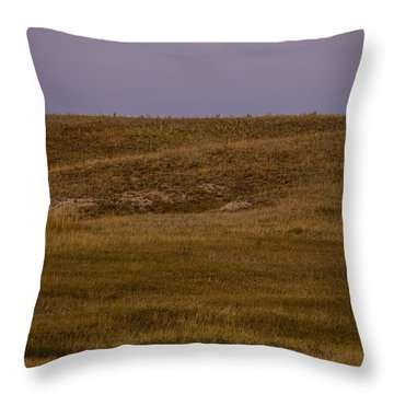 Moonrise Over Badlands South Dakota Throw Pillow by Steve Gadomski