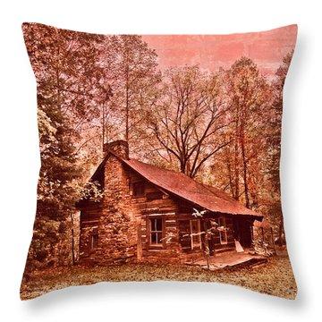 Moonshine Throw Pillow by Debra and Dave Vanderlaan