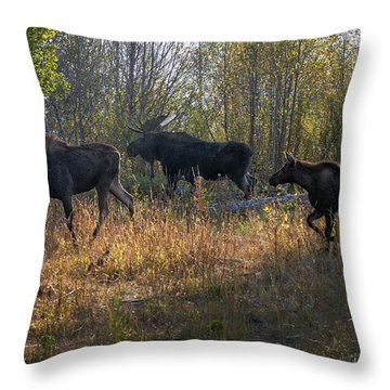 Moose Family Throw Pillow by Ronald Lutz