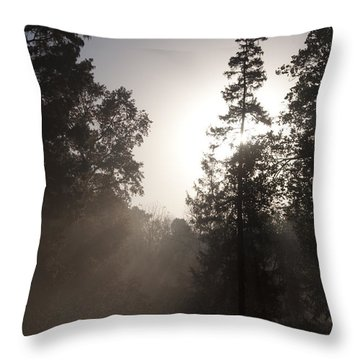 Morning At Valley Forge Throw Pillow by Bill Cannon