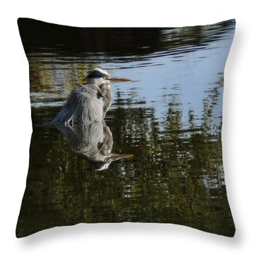 Morning Bath Throw Pillow by Steven Sparks