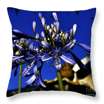 Throw Pillow featuring the photograph Morning Blooms by Clayton Bruster