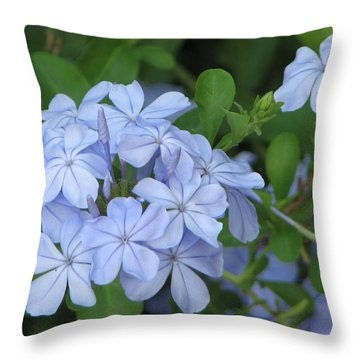 Throw Pillow featuring the photograph Morning Blues by John Glass