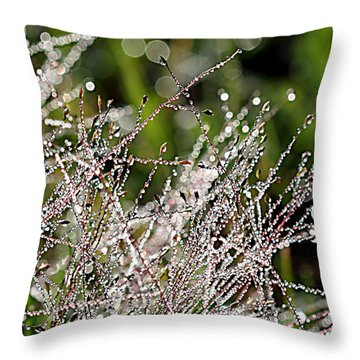 Throw Pillow featuring the photograph Morning Dew by Lauren Radke