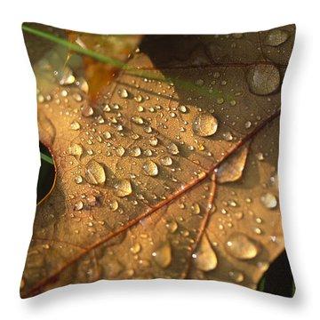 Morning Dew On Oak Leaf Throw Pillow