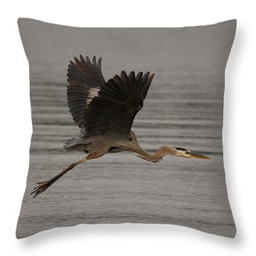 Morning Flight Throw Pillow by Eunice Gibb