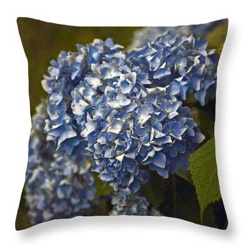 Morning Garden Throw Pillow