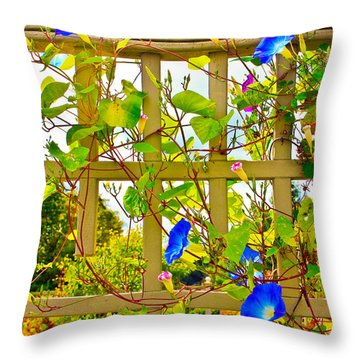 Morning Glory  Throw Pillow by Ann Murphy