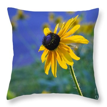 Throw Pillow featuring the photograph Morning Light by Nava Thompson