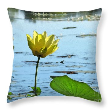 Throw Pillow featuring the photograph Morning Lotus Pond by Deborah Smith