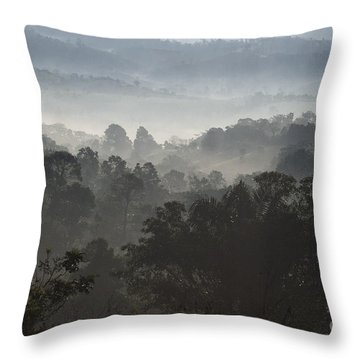 Morning Mist In Panama's Highlands Throw Pillow by Heiko Koehrer-Wagner