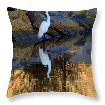 Morning Of Apricot Throw Pillow by Karen Wiles
