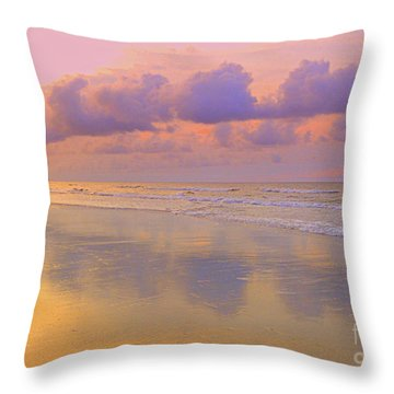 Throw Pillow featuring the photograph Morning On The Beach  by Lydia Holly