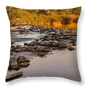 Morning Reflections Throw Pillow by Robert Bales