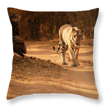 Morning Stroll Throw Pillow