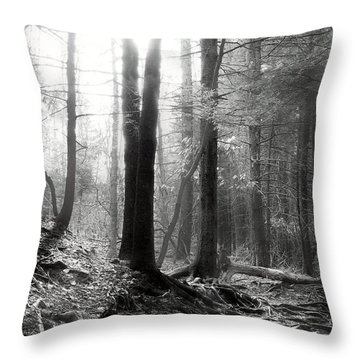 Throw Pillow featuring the photograph Morning Sun by Mary Almond