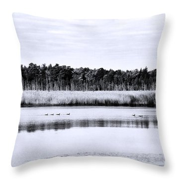 Morning Swim Throw Pillow by John Rizzuto