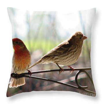 Throw Pillow featuring the photograph Morning Visitors 2 by Rory Sagner