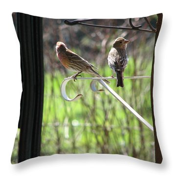 Throw Pillow featuring the photograph Morning Visitors by Rory Sagner
