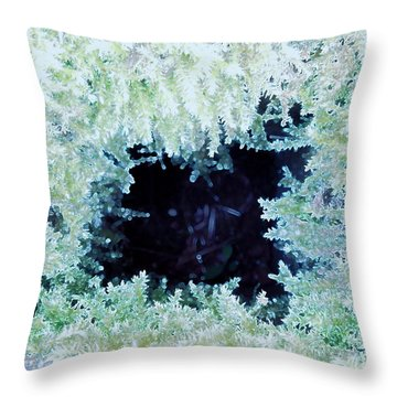 Throw Pillow featuring the photograph Moss Geode by Renee Trenholm
