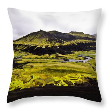 Moss In Iceland Throw Pillow