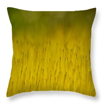 Moss In Yellow Throw Pillow