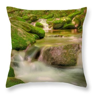 Throw Pillow featuring the photograph Mossy Beauty by Cindy Haggerty