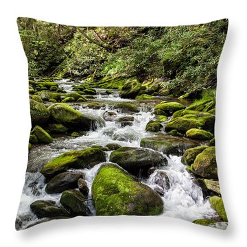 Mossy Creek Throw Pillow by Ronald Lutz