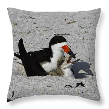 Mother And Baby Black Skimmer Throw Pillow by Barbara Bowen