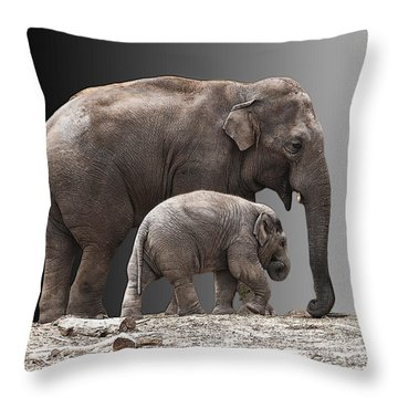 Mother And Baby Throw Pillow by Sheila Laurens