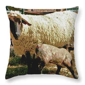 Throw Pillow featuring the photograph Mother And Child Iv by William Fields
