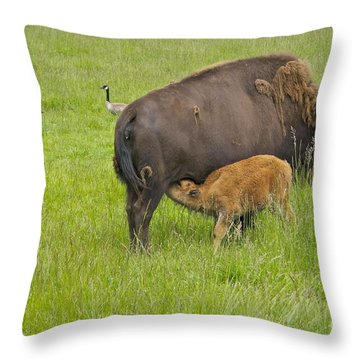 Mother's Milk Throw Pillow by Sean Griffin