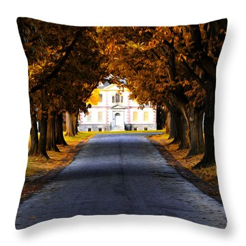 Mount Pleasant Mansion - Philadelphia Throw Pillow by Bill Cannon