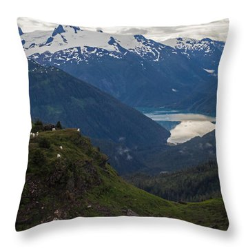 Mountain Flock Throw Pillow by Mike Reid