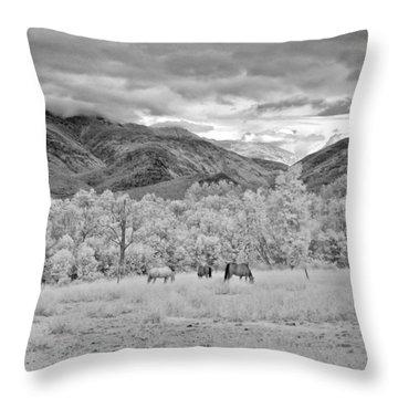 Mountain Grazing Throw Pillow by Joann Vitali