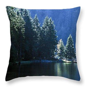 Mountain Lake In Arbersee, Germany Throw Pillow by John Doornkamp