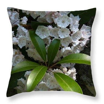 Mountain Laurel Dsmf046 Throw Pillow by Gerry Gantt