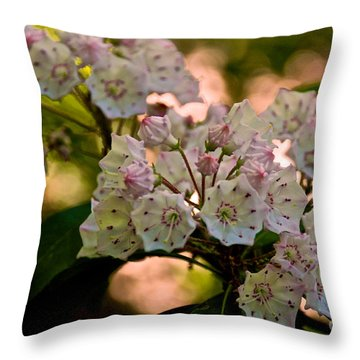 Mountain Laurel Flowers 2 Throw Pillow