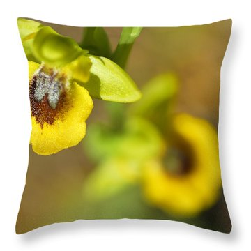 Mountain Orchids Throw Pillow by Guido Montanes Castillo