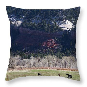 Throw Pillow featuring the photograph Mountain Pasture by Lorraine Devon Wilke
