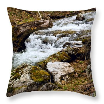 Throw Pillow featuring the photograph Mountain Stream by Les Palenik