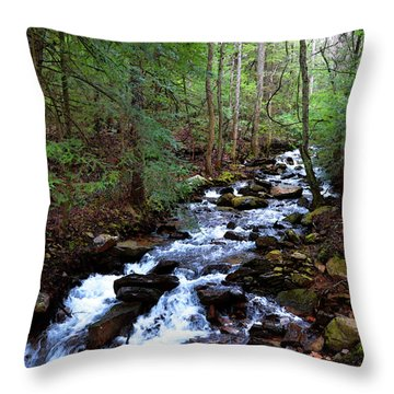Throw Pillow featuring the photograph Mountain Stream by Paul Mashburn