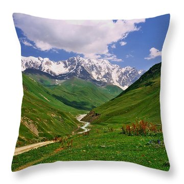 Mountain Valley Throw Pillow