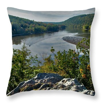 Mountain View Throw Pillow by Karol Livote