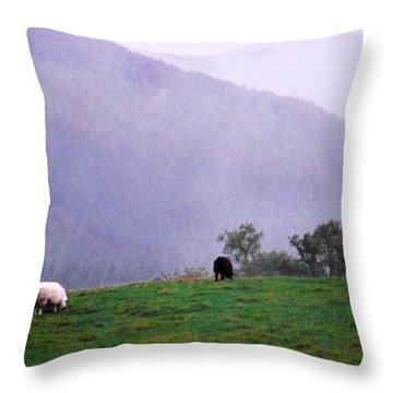 Mourn Mountains Approaching Rain Throw Pillow by Thomas R Fletcher