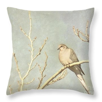 Mourning Dove In Winter Throw Pillow