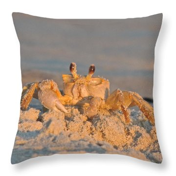 Mr. Crabby Throw Pillow