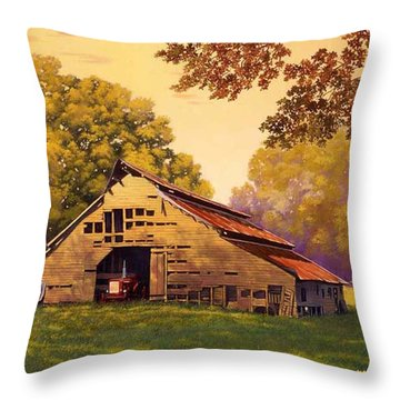 Mr. D's Barn Throw Pillow