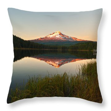Oregon State Throw Pillows