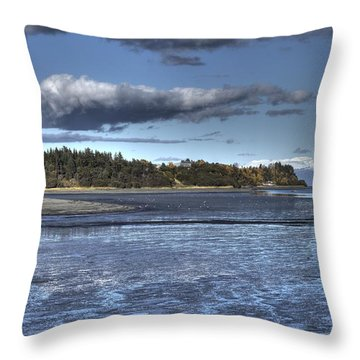 Throw Pillow featuring the photograph Mud Bay  by Michele Cornelius